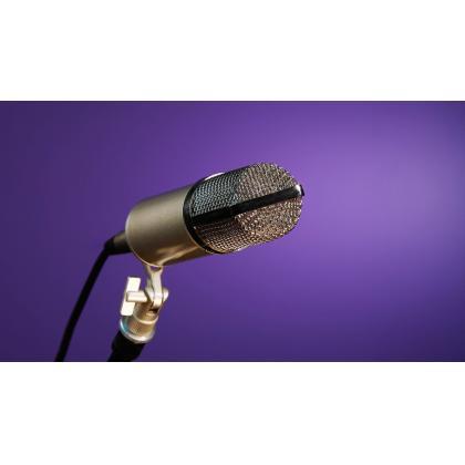 Izbor pevačkog mikrofona ili pevaj ujko pevaj RODE…prvi deo.