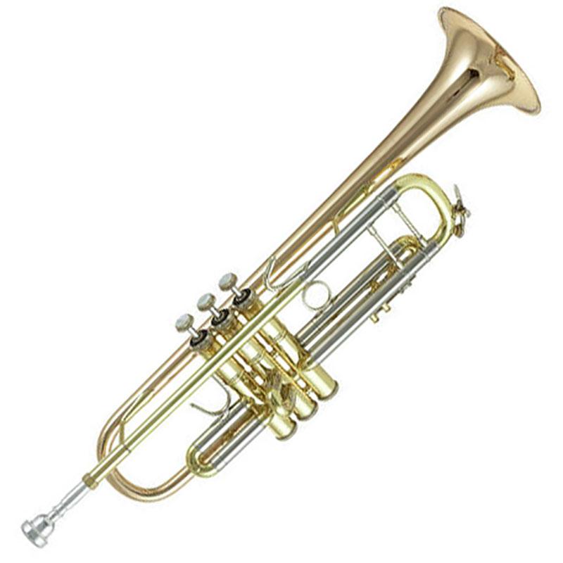Vincent Bach 180LG truba