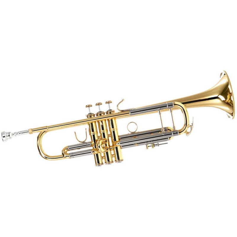 Vincent Bach 180MLV truba