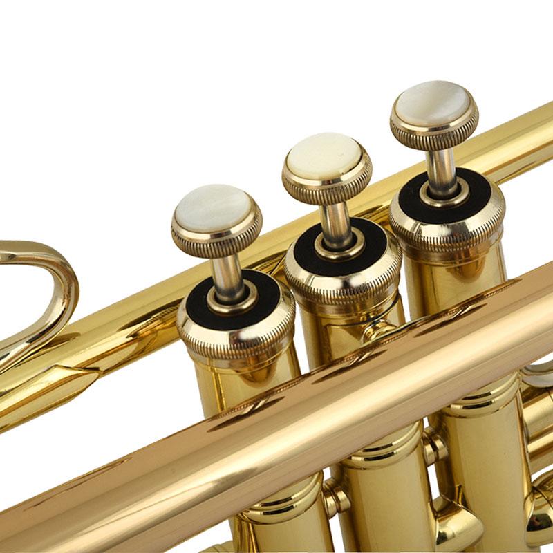 Vincent Bach LR18037G truba