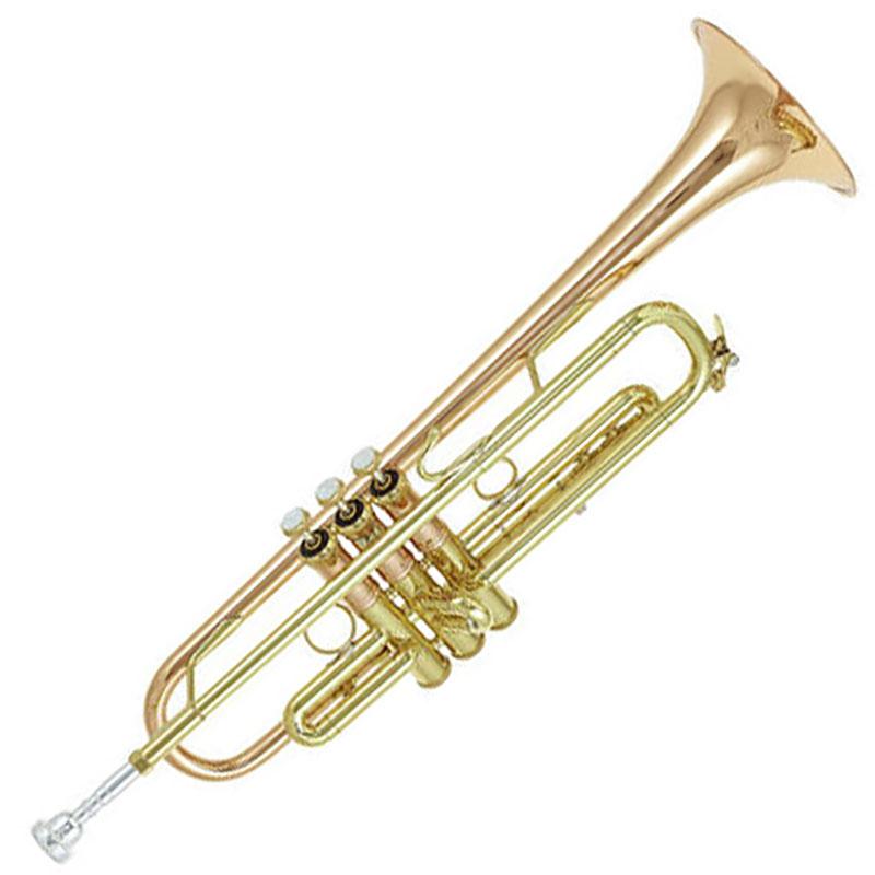 Vincent Bach LT190L1B truba
