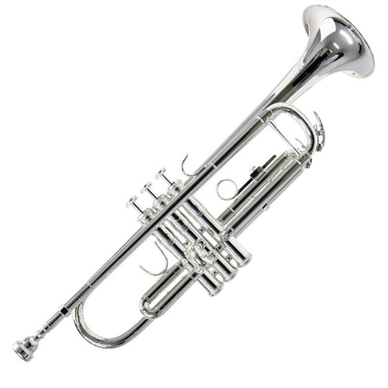 Vincent Bach ML180S37G truba