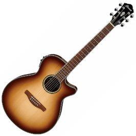 ibanez aeg10ii-nnb akustična gitara 1