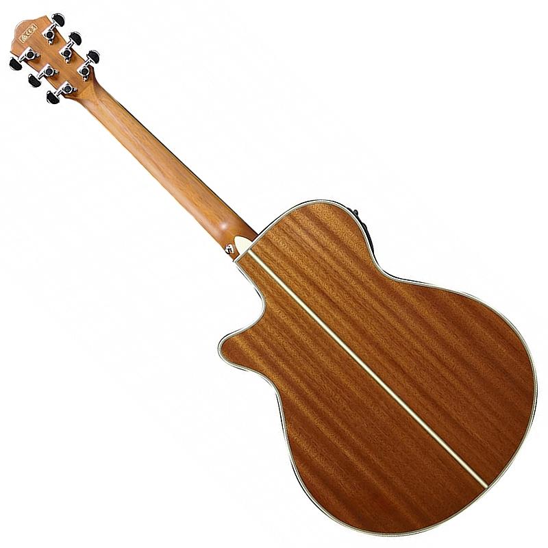 Ibanez AEG10II-NNB akustična gitara