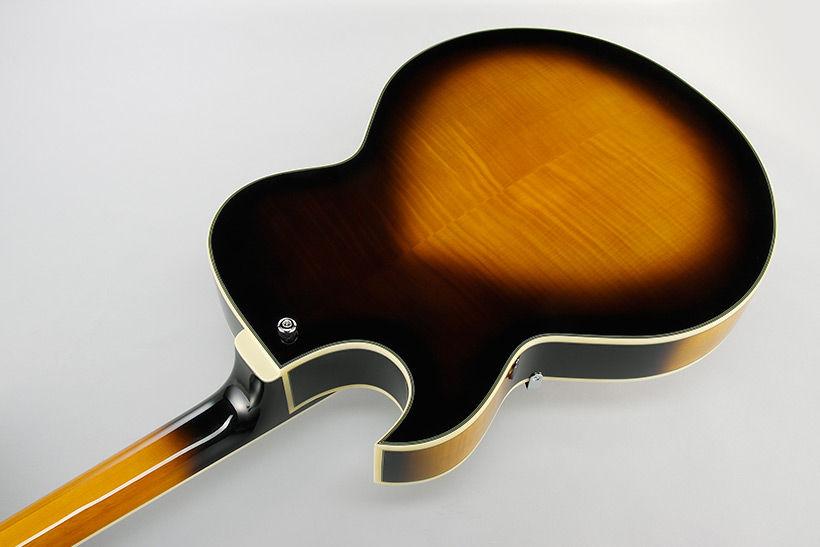 Ibanez AKJ95-VYS električna gitara