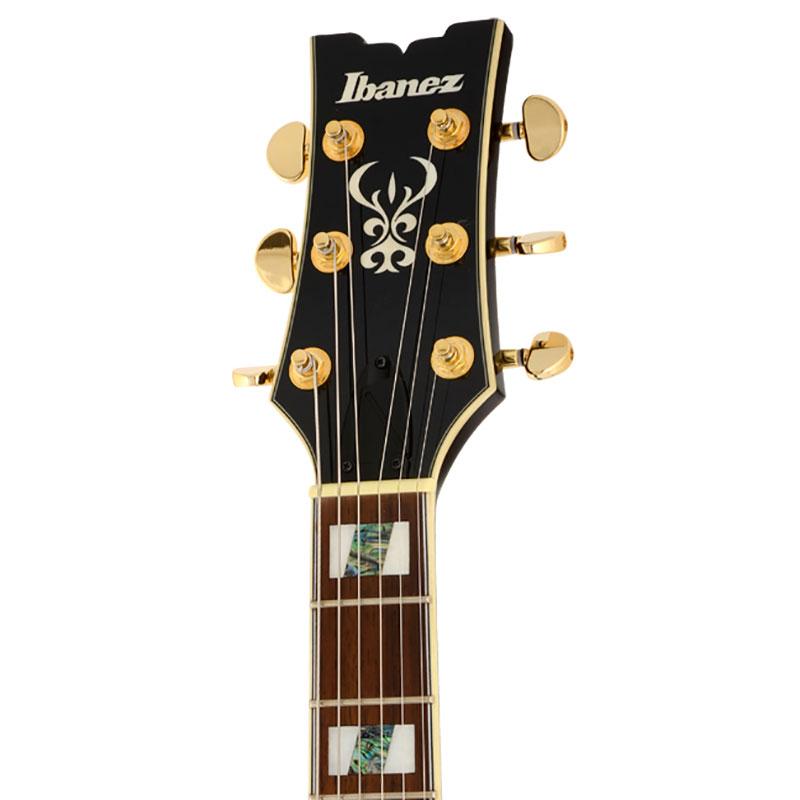 Ibanez AR325-DBS električna gitara