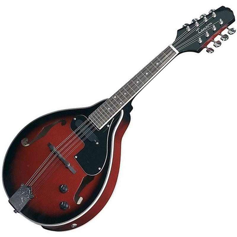 Tenson A-1E ozvučena mandolina