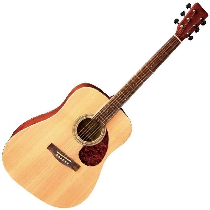 VGS D-10 NAT akustična gitara