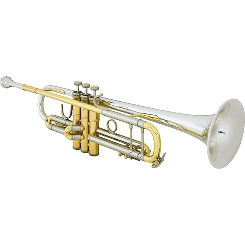 Vincent Bach 18037R truba