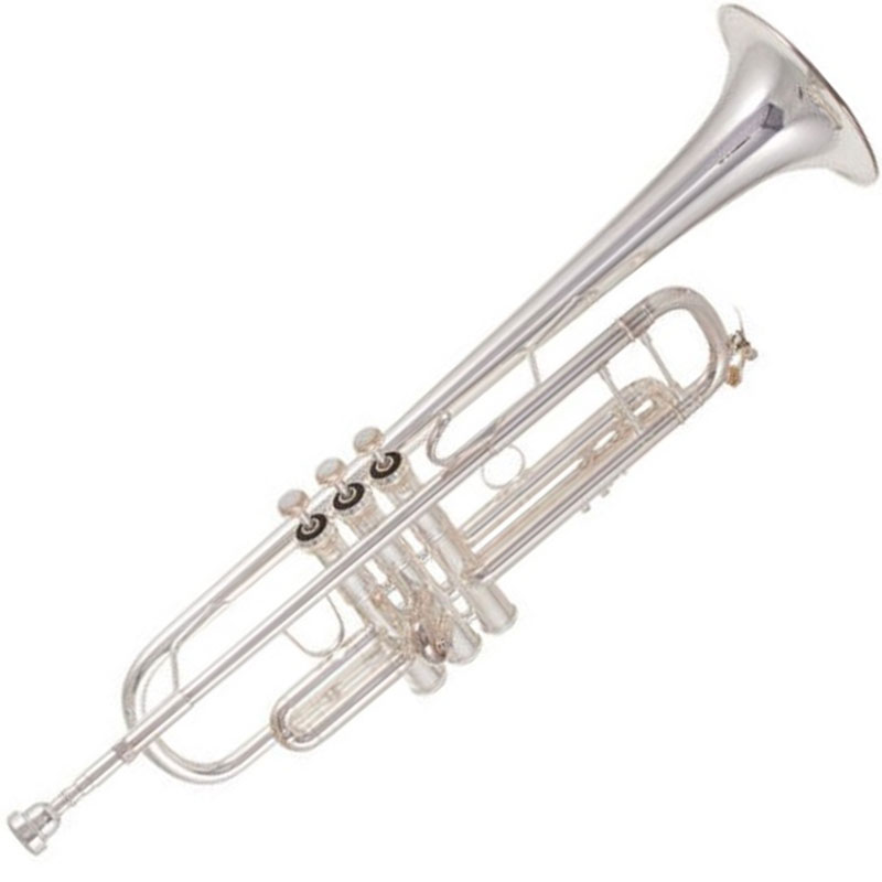 Vincent Bach 180SMLVG truba
