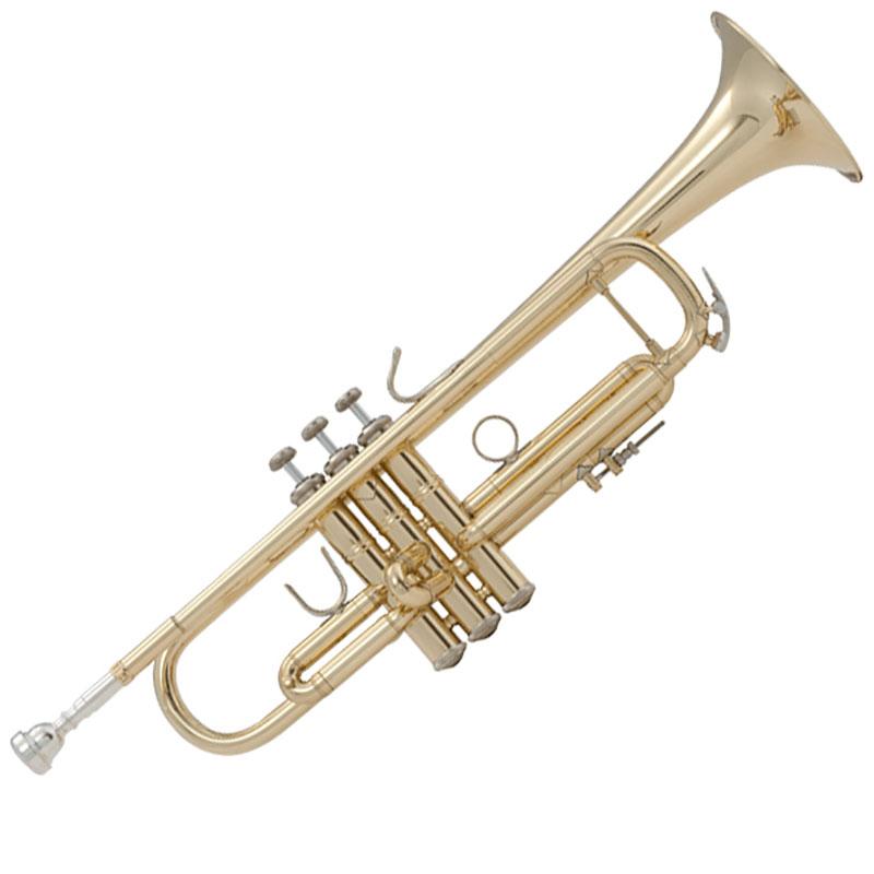 Vincent Bach LR18037 truba