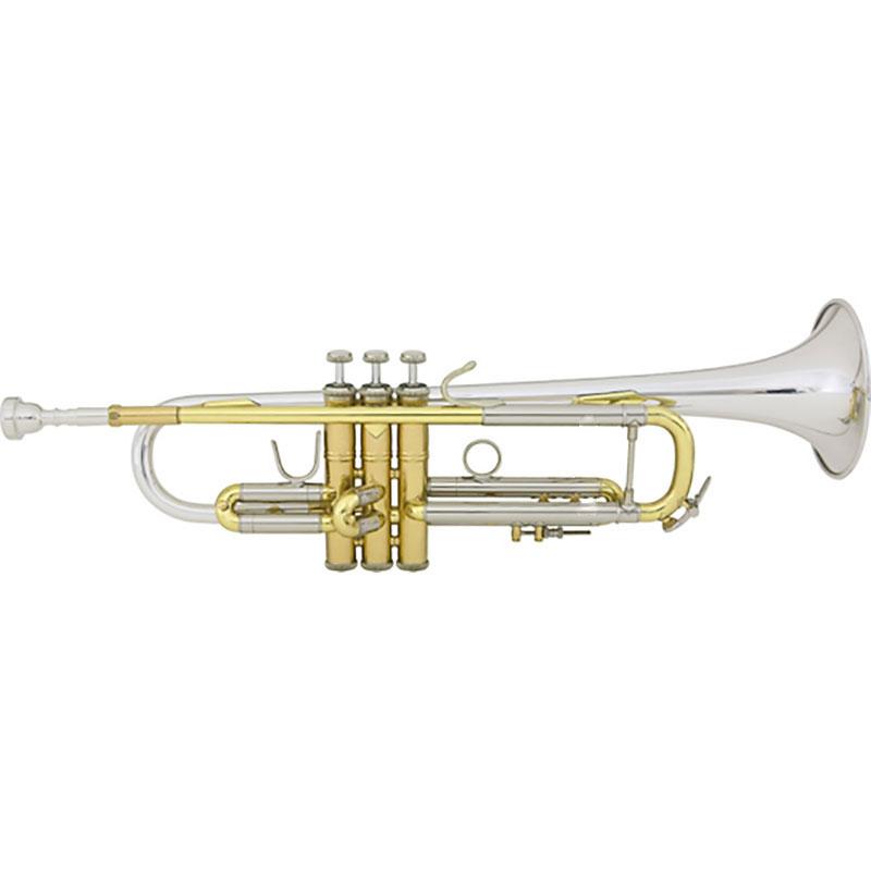 Vincent Bach LR18043R truba