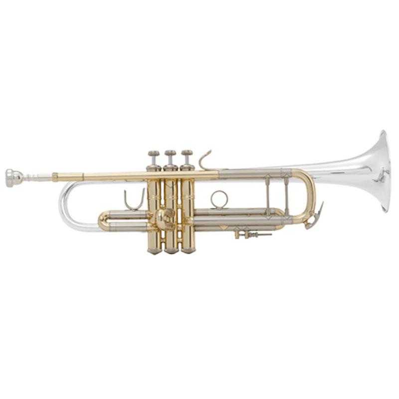 Vincent Bach ML18072R truba