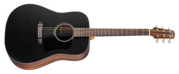 Walden Natura D560EB ozvučena akustična gitara
