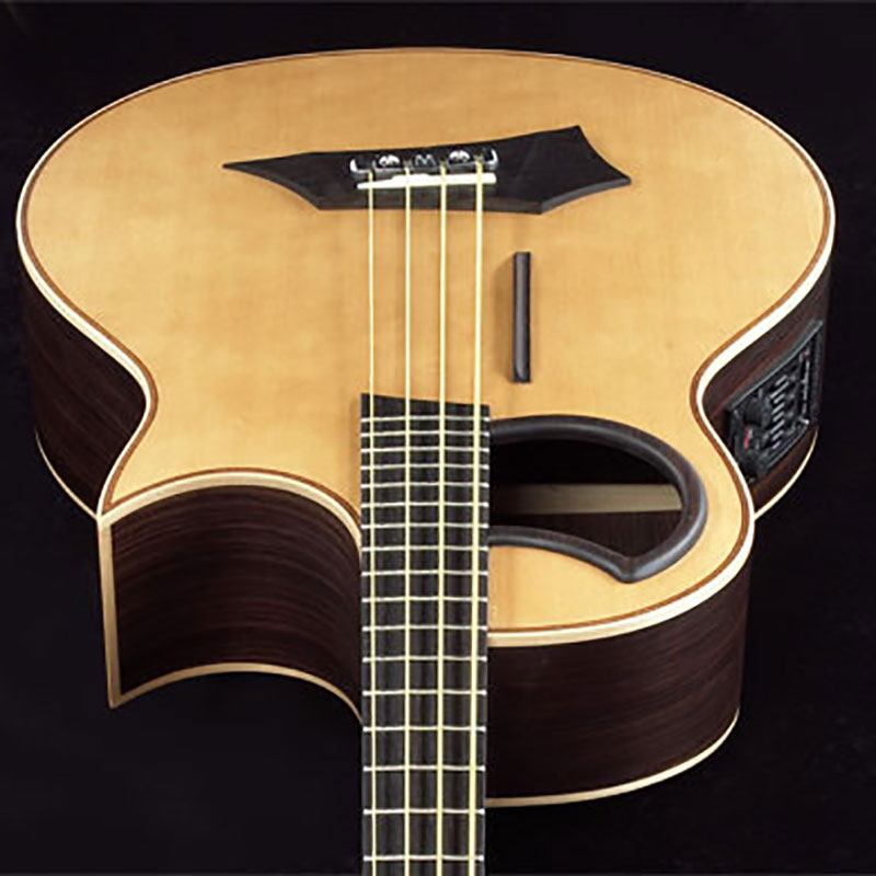 Warwick Alien 1374909000CFOVSMWW akustična bas gitara