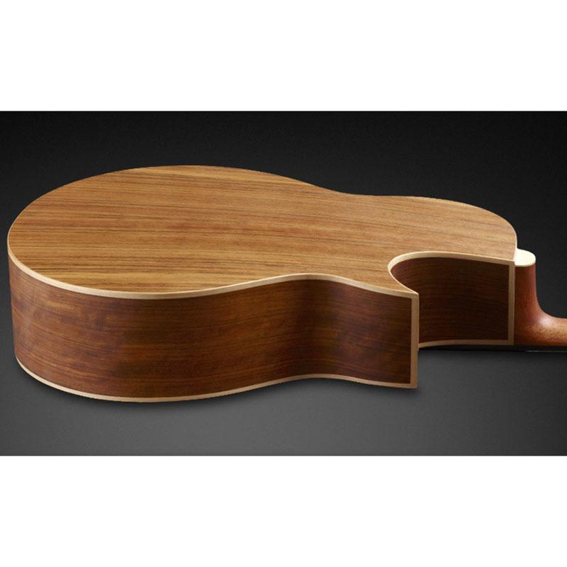 Warwick Alien 1374909000CFOVSMWW L akustična bas gitara
