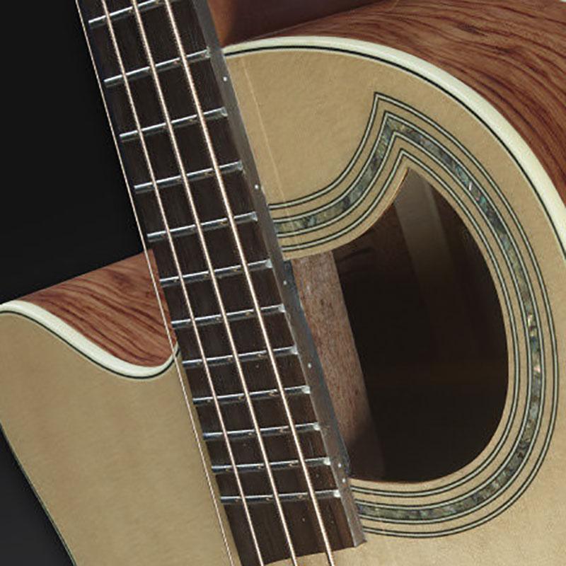 Warwick RockBass Alien Deluxe 4 FRL akustična bas gitara