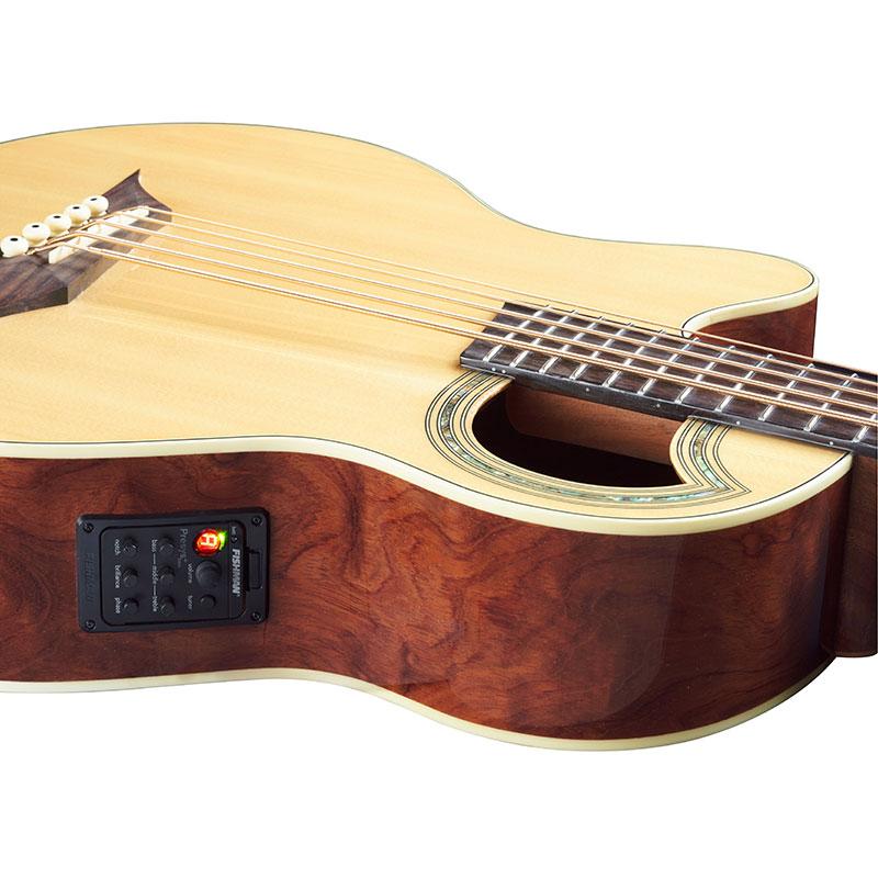 Warwick RockBass Alien Deluxe 5 FRL akustična bas gitara