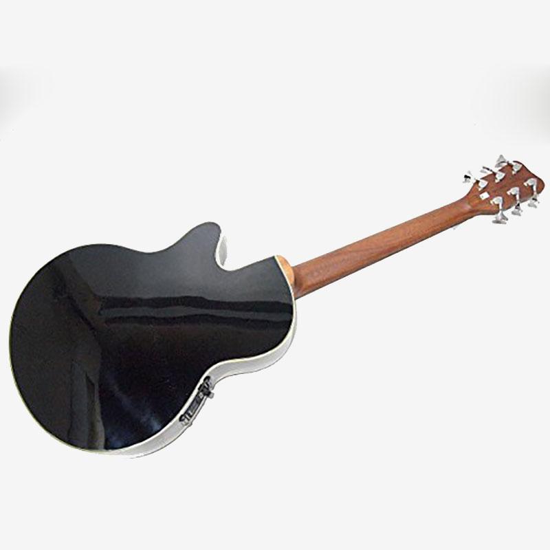Warwick RockBass Alien Standard 6 Fretless akustična bas gitara