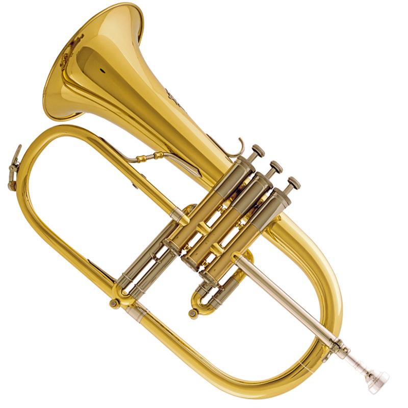 1070-Fluegelhorn-frei-VS-2-1