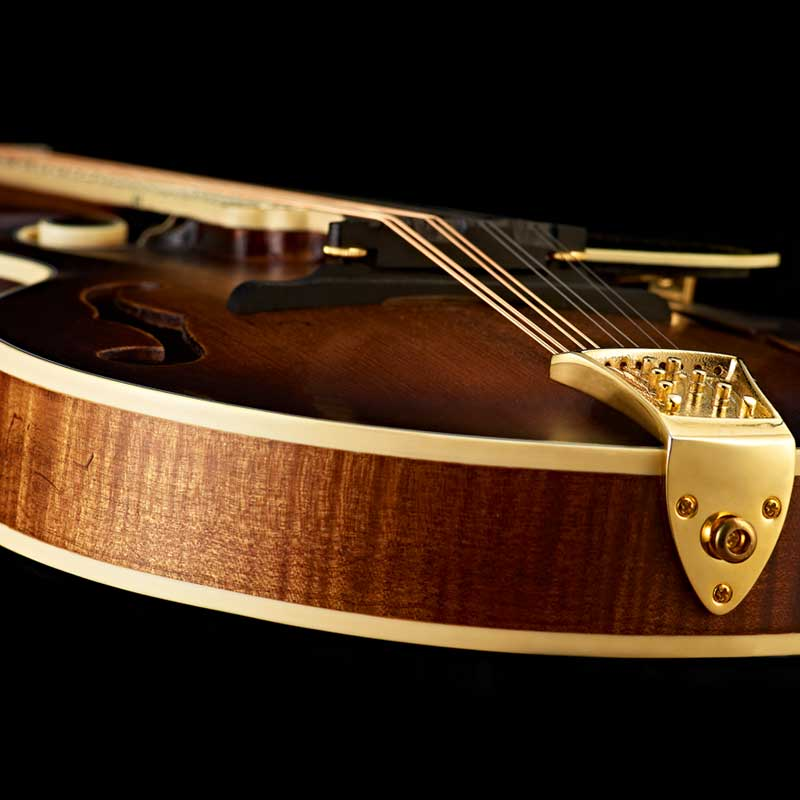 Ortega RMFE100AVO mandolina