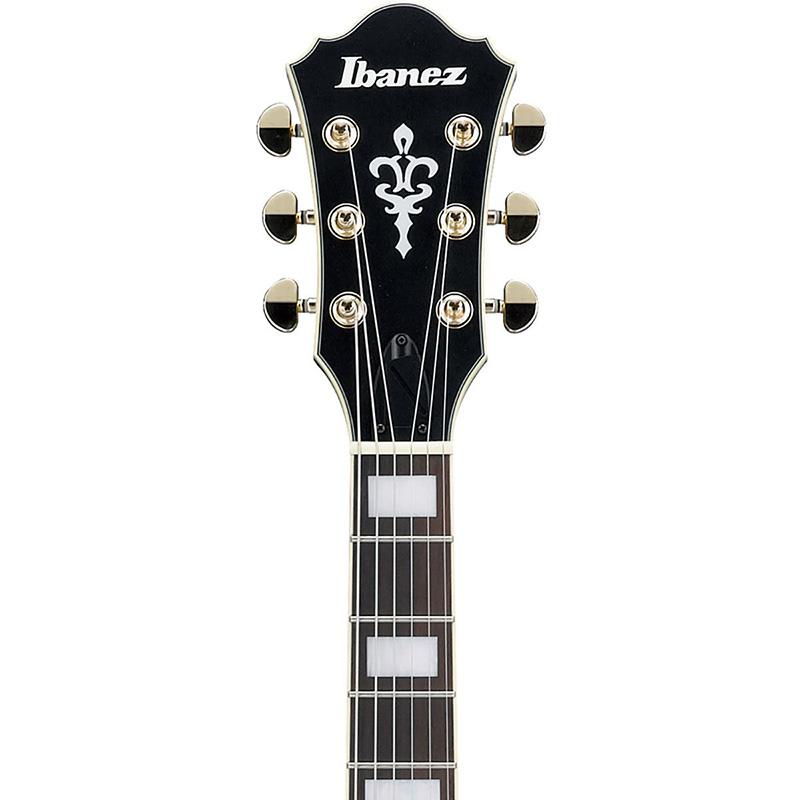 Ibanez AF75G-BKF električna gitara