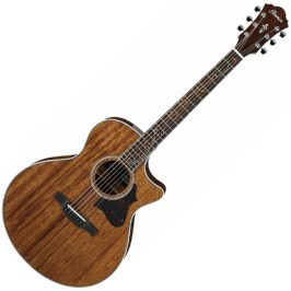 ibanez ae245-nt akustična gitara